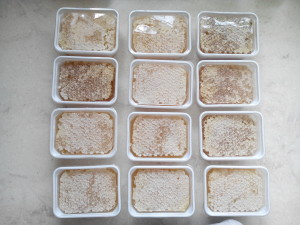 raw comb honey 1