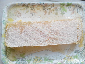 raw comb honey 3