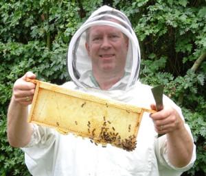 beekeeping frame