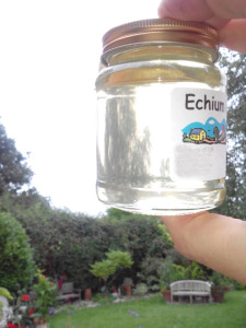 echium honey 2 lr no add