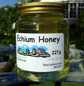 raw-echium-essex-honey-for-sale